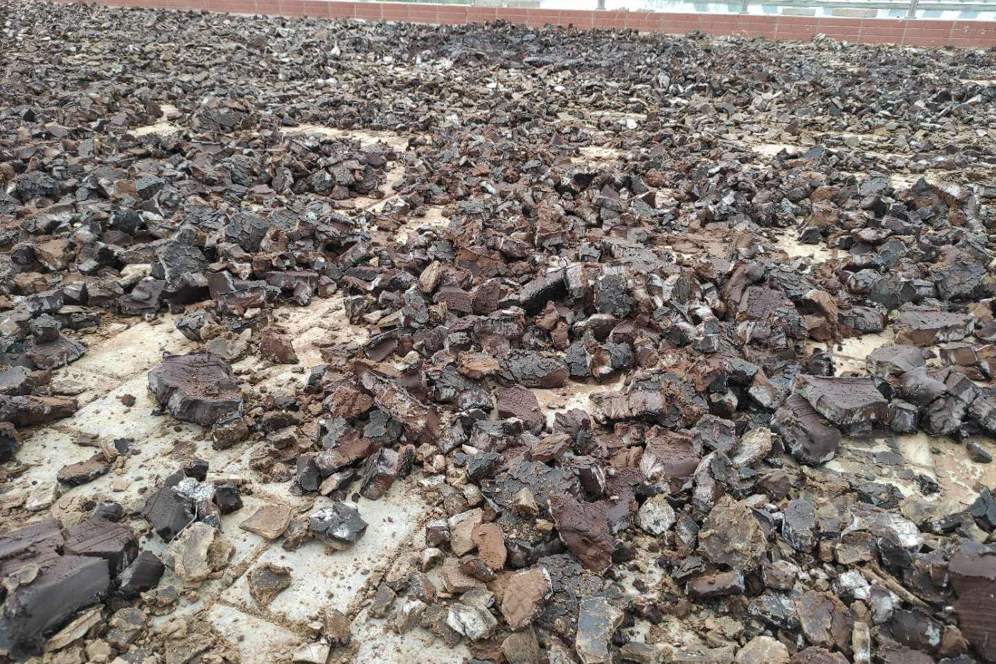 在陕西咸阳农村游玩,地上晒了这么多黑色的东西,像不像巧克力?