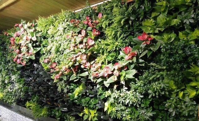 仿真垂直绿化植物墙_垂直绿化植物墙_植物墙 垂直绿化技术 绿化墙设