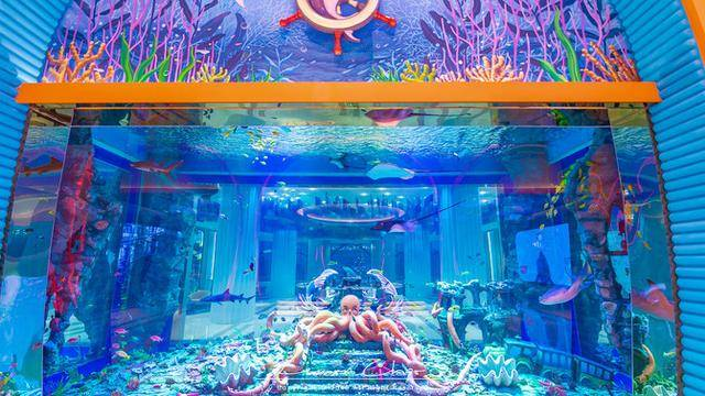 住进云南抚仙湖边的童话世界,阳台就能看海,与美人鱼住在一起