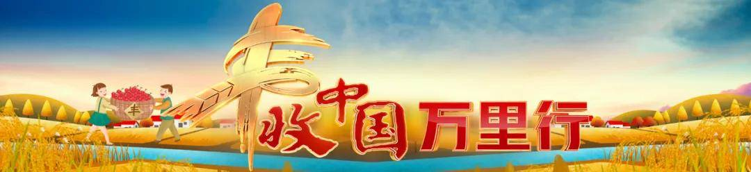 丰收中国万里行之云南通海丨探访秀丽小城,让中国鲜花绽放世界!