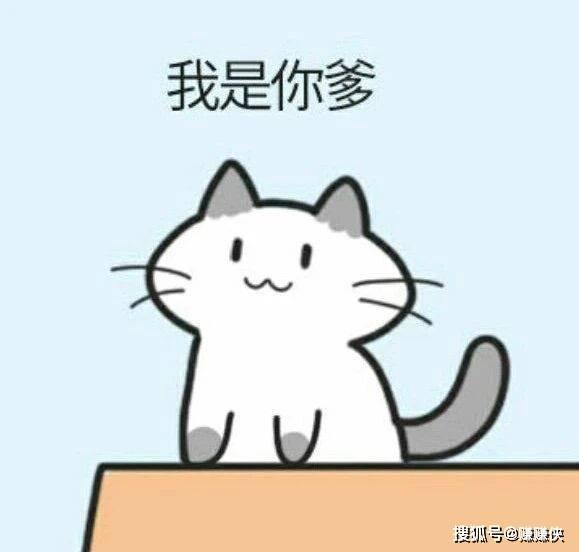 可爱脸色包图片:猫猫一句话,熊猫成了背影杀手
