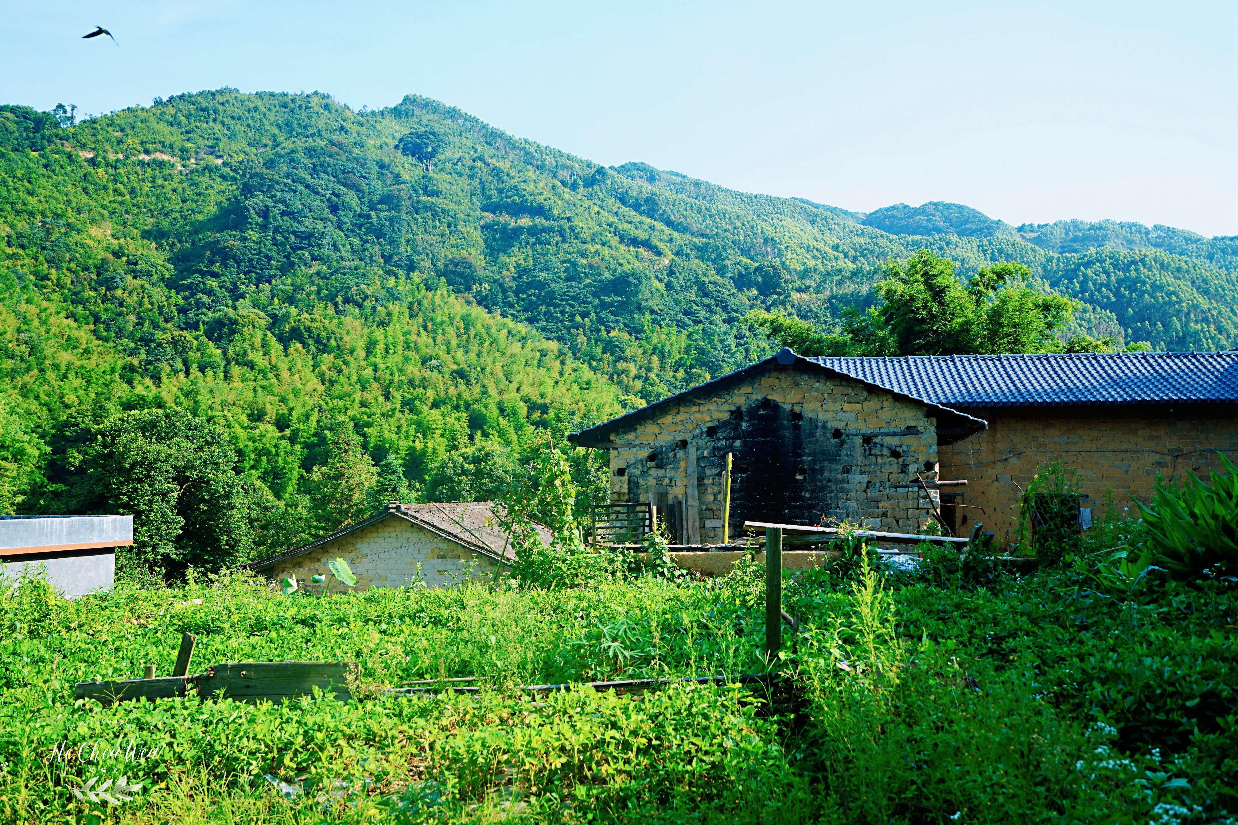 原创             广东的一个小山村,风光秀丽,人杰地灵,更是避暑天堂