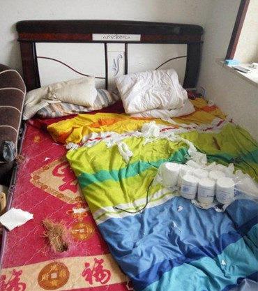 原创 主人回家见客厅相安无事,正想夸二哈一番,效果走近卧室秒溃逃