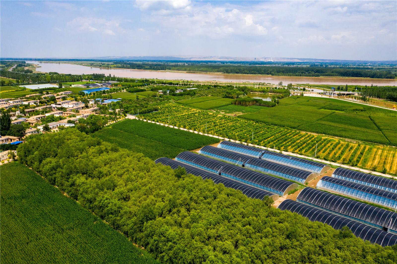 【黄河两岸是我家】走进叶盛:看宁夏优质大米是如何生产出来的