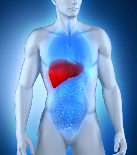 """肝脏的""""清洁剂""""被发现了,不是枸杞,若你能接受,肝一天比一天干净"""