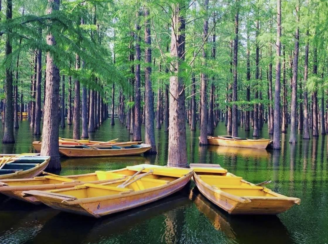 湖南长沙洋湖湿地公园