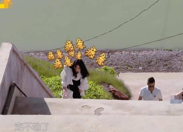 赵丽颖爬不动台阶 暖心店长黄晓明拉着她往上走