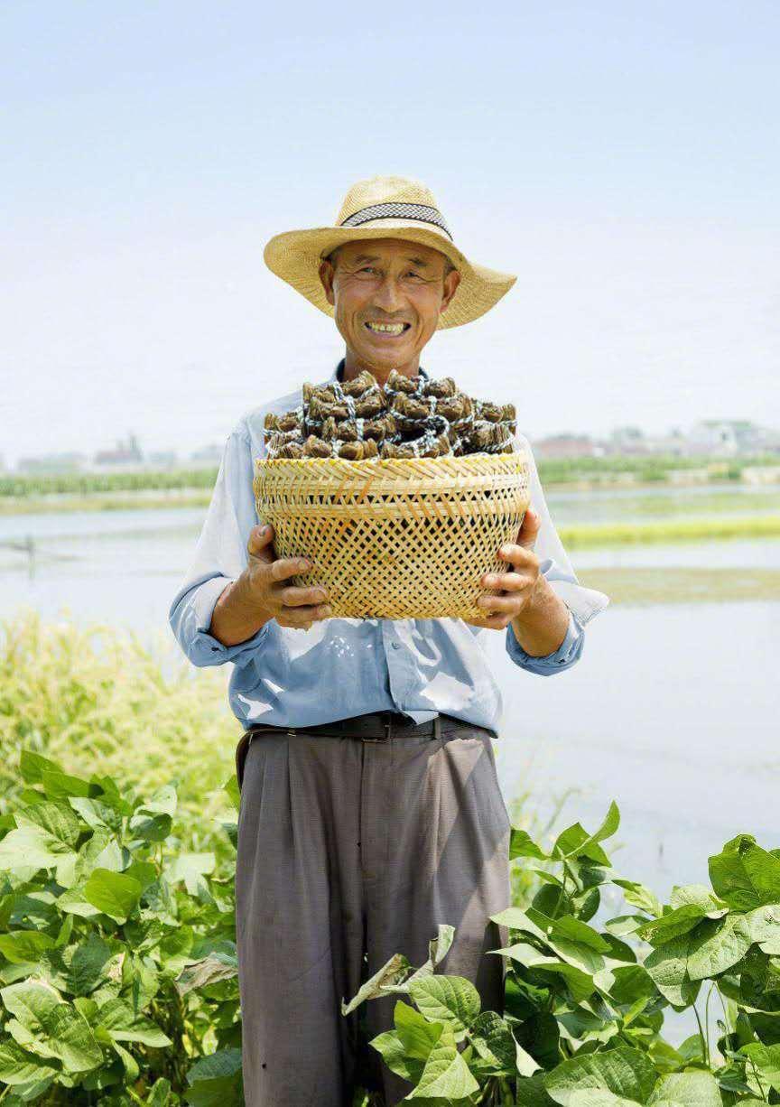 <strong>拼多多农货节来了,农副产物翻身把歌颂</strong>
