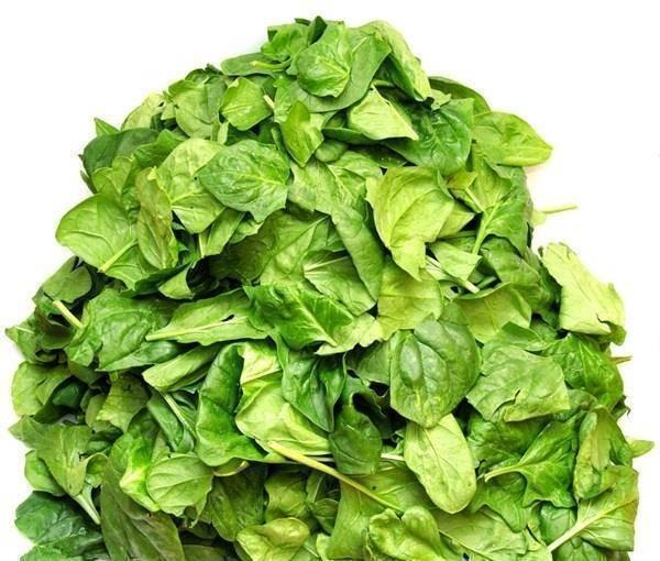 人到中年常吃四种食物,滋阴补肾,健脾暖胃,延缓肌肤衰老