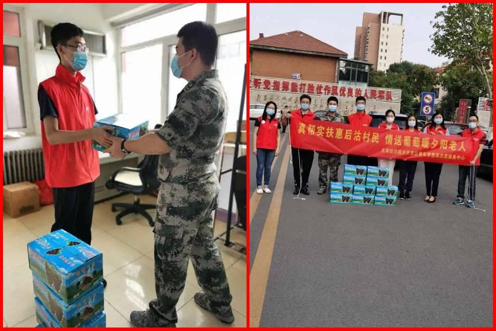 天津滨海:真帮实扶惠后沽村民情送葡萄暖夕阳老人