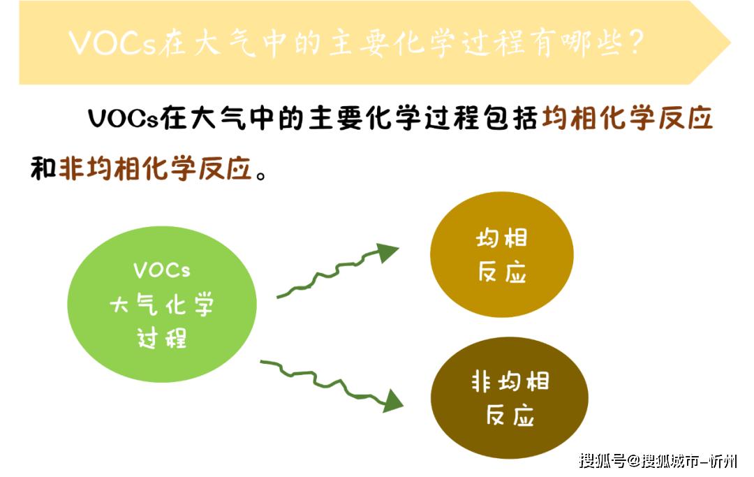 【环保小讲堂】| VOCs的大气化学过程及人体健康效应
