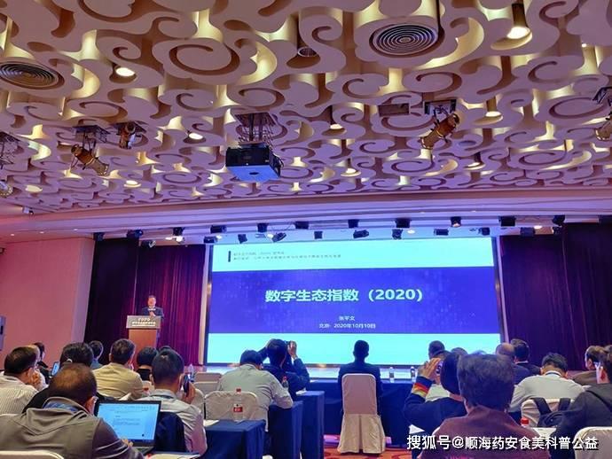 2020中国大数据产业发展指数在京发布