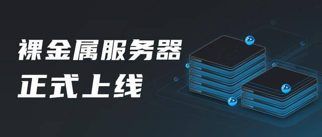 500彩票官方网站:鸟云裸机上线 加速云上的商业宁静
