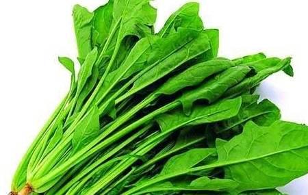 女人多吃这道菜,就能延缓衰老,调节月经,滋养子宫,肌肤透亮