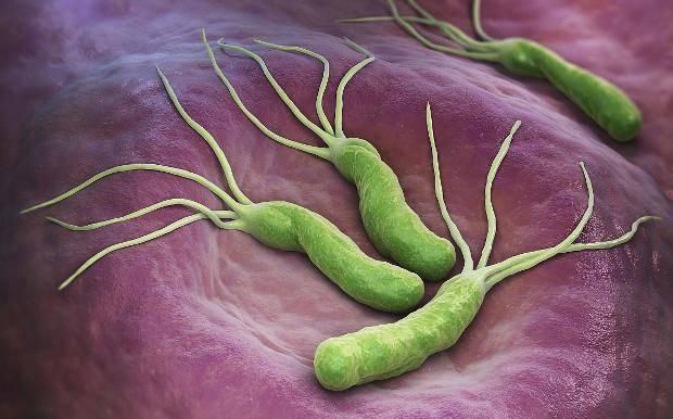 幽门螺杆菌总来打扰,若养成这些习惯,或能让