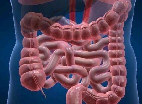 经常在此时间点排便的人,你的肠子会比较健康,看看你也是吗?