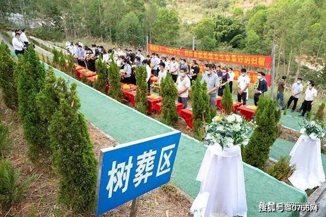 罗定市举行2020年公益树葬活动,38位逝者长眠青山绿树下