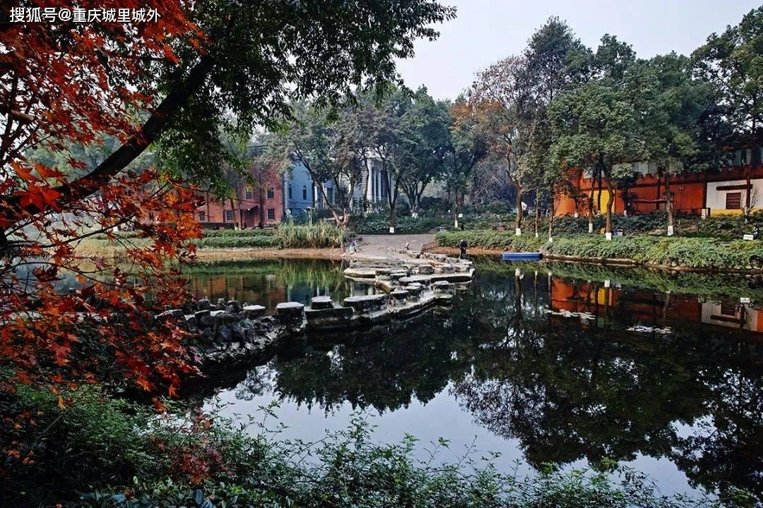距上次逛沙坪公园已四十多年了,这个人文厚重的老公园还能看什么