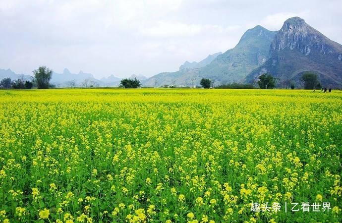 """广西南宁这个县有""""南宁后花园""""之称,这五个旅游景点值得一去"""