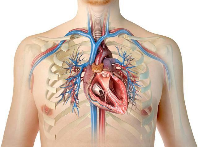 慢阻肺经过一次加重住院后,半数以上,将活不过5年,是真的吗?