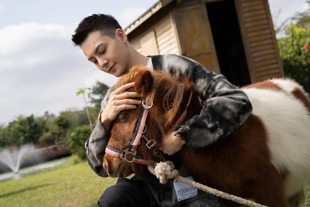原创             陈伟霆为什么红了很多年?属牛的他帅气有品,最爱穿TOMMY HILFIGER