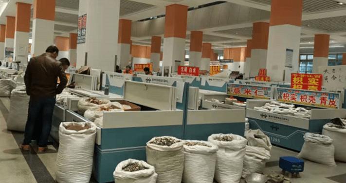 安徽亳州:提档升级,全力打造世界中医药之都