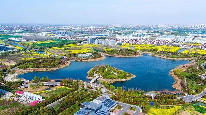 """窦小林:""""三个致力""""打造新能源专业特色园区"""