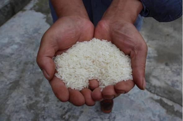 九庄纸房村:好山好水出好米