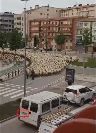 """蒙古国送中国的3万只羊""""抵达""""北京延庆?假的!"""