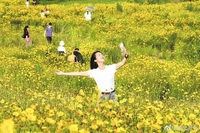 全民检测结果让大家吃了定心丸——武汉三镇居民大踏步回归正常生活