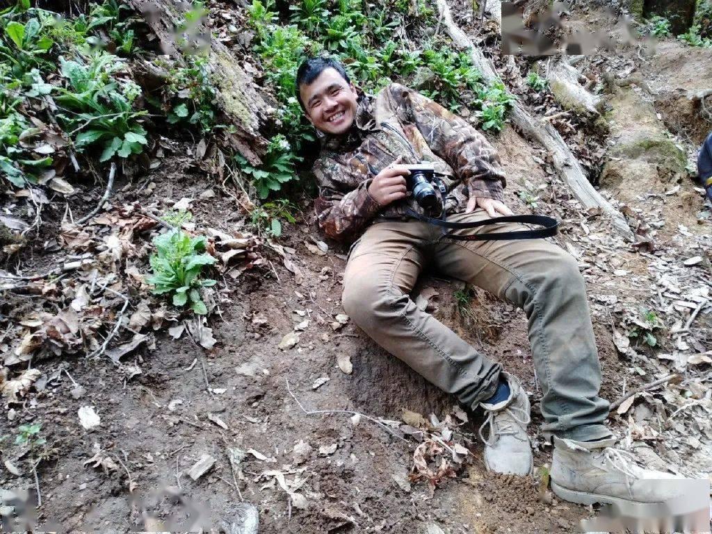 90后男孩一见大理误终身,爬苍山400次,拍摄植物5000+,堪称行走的植物图鉴!