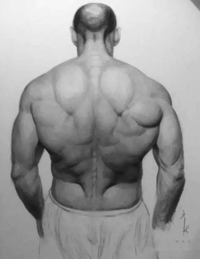 有一种背,叫杰森斯坦森的背! 锻炼方法 第11张
