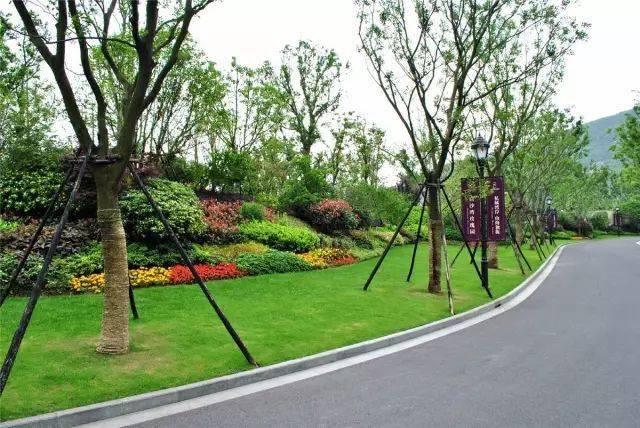 园林景观设计的植物配置原则