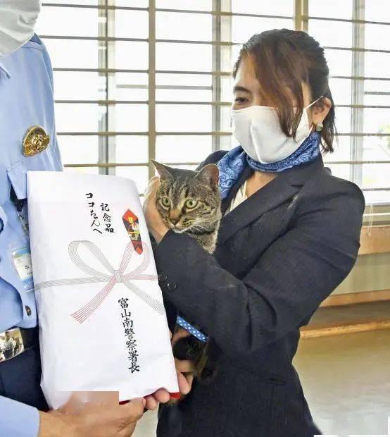 喵星人之光!家猫帮警方救下落水男子,获奖励啦
