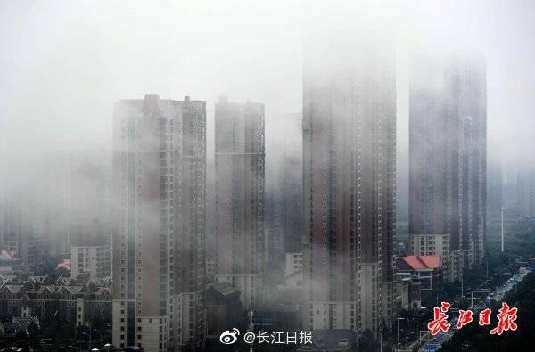 武汉高楼雨雾缭绕 图集