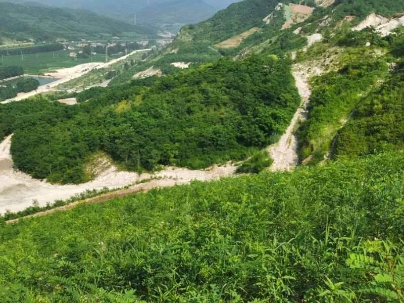 [奔向我们的小康]喜见青山有多迷人--秀岩
