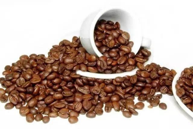 教你如何像大师一样煮咖啡 试用和测评 第3张