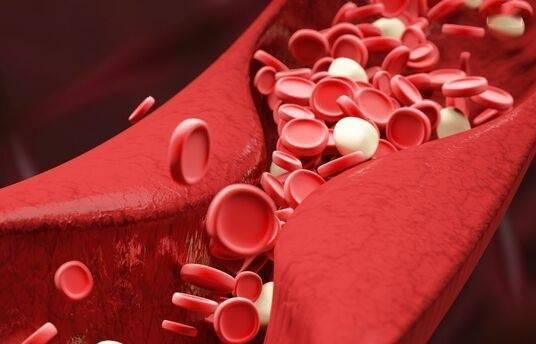 中瑞科学家开发出电子血管:具有弹性和可生物降解 能代替兔子关键动脉