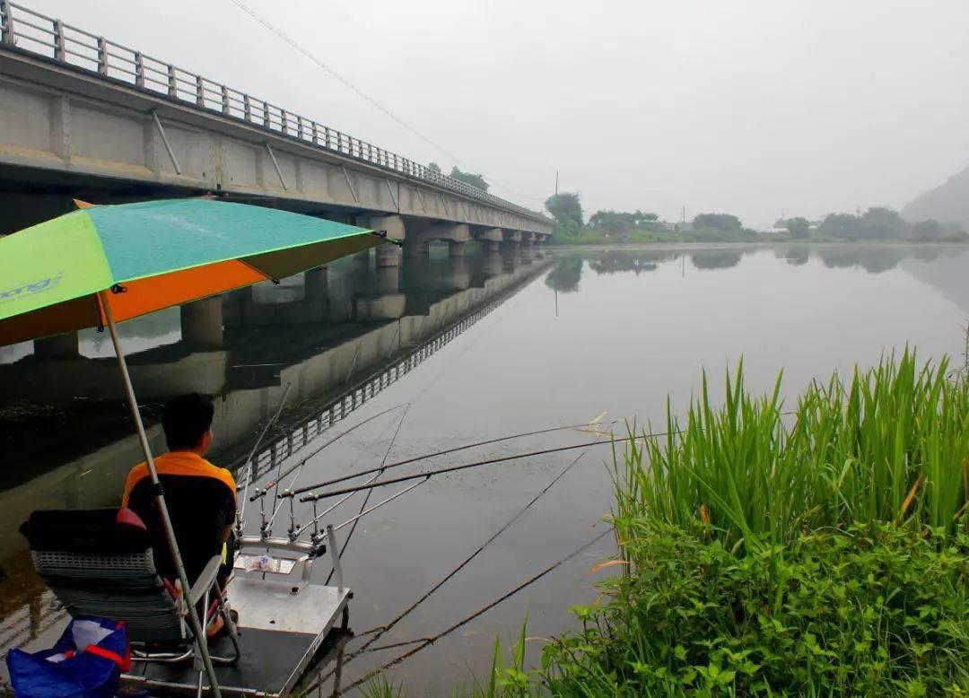 看韩国人钓鱼,多竿密集排成扇形,一次花费2.5万
