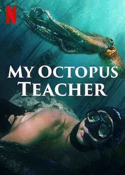 我的章鱼老师-1