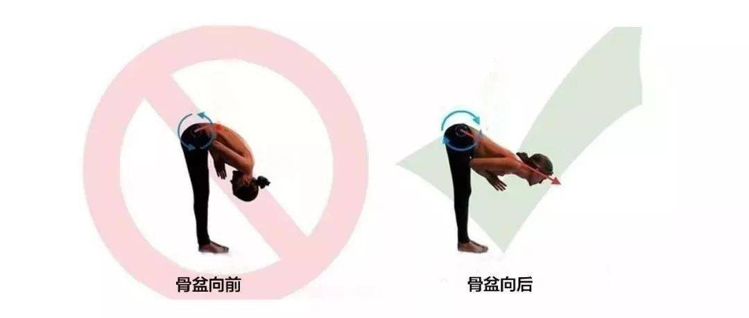 瑜伽前屈做不好,原来是有骨盆后倾的习惯!