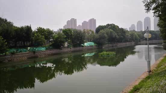 """河清景美人富 """"九河下梢""""天津上千名河长治河"""