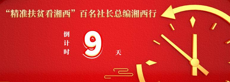 """泸溪下湾遗址入选""""十三五""""湖南省十大考古新发现"""
