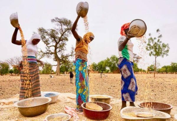 世界粮食计划署发出警告:萨赫勒中部国家离饥荒只差一步