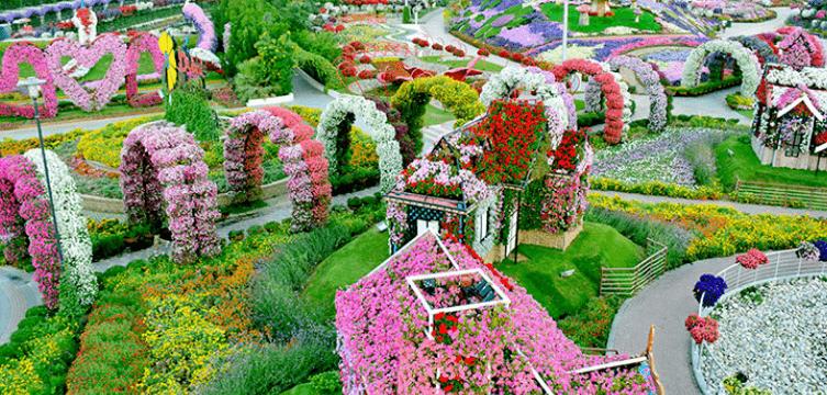 迪拜奇迹花园将在11月开放