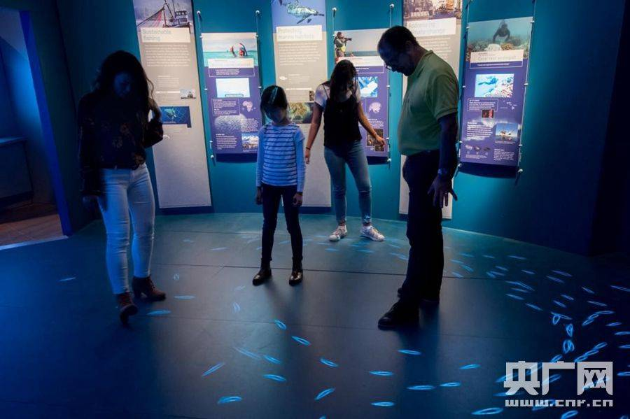 大型国际科普巡展《神秘海洋》在广东科学中心展出