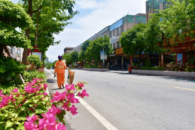 地豆镇如何打造成为四会首个国家卫生镇!