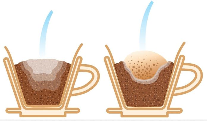 煮一杯全世界最好喝的咖啡,手冲咖啡3个你不能不知道的细节 防坑必看 第8张