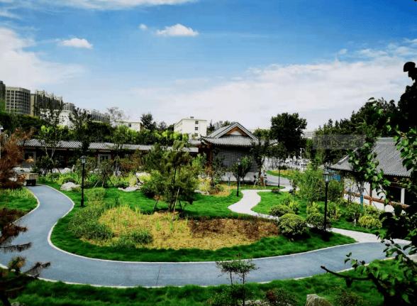 """郑州首个海绵型公园""""郑州雨园""""免费开放!位置在这儿→"""