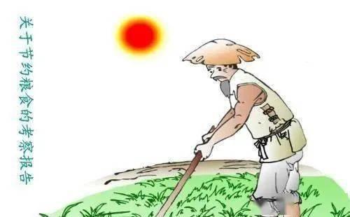 70后拒绝种地,80后不会种地,未来中国农村内的田地由谁种植?  第2张